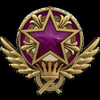 Service medal 2021 lvl5 large