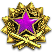 Service medal 2017 lvl5 large