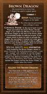 Loyalty Card - Brown Dragon