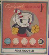 Equip Cards2