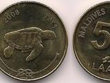 Maldivian 50 laari coin