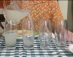 106 Harry's Lemonade from For Real Segment Room for One More.png