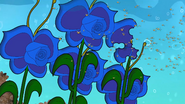 Funky Flower Beetle 3