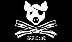 BACoN Official Flag