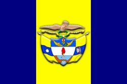 TGC Official Flag