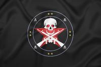 ASC Official Flag