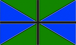 TAA Official Flag