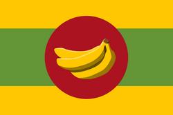BanRepFlag.png