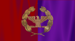 Rome Official Flag
