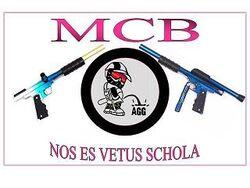 M. Carter Brown Official Flag