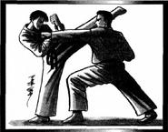 Japan (Nippon) Martial Arts