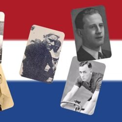 NL collage.jpg