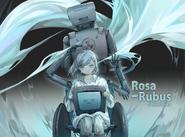 Rosa Rubus