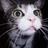 Zurgat's avatar