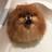 PixieLil's avatar