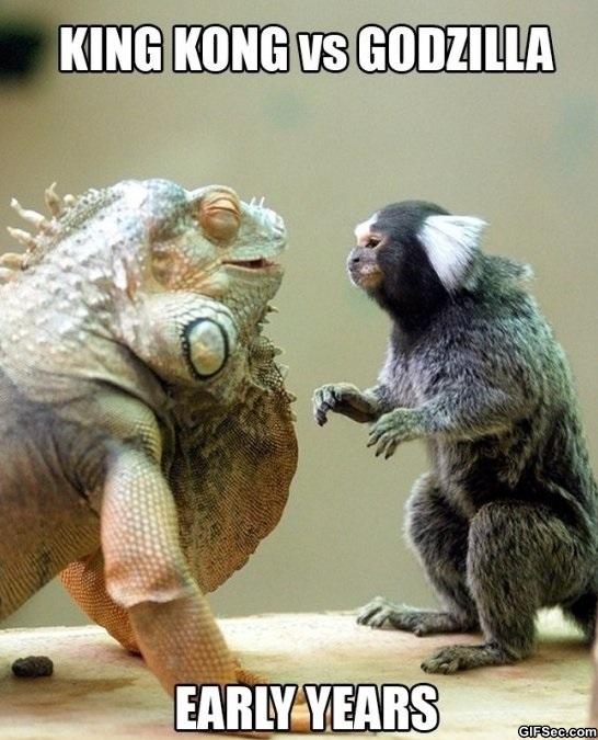 Godzilla vs kong meme | Fandom