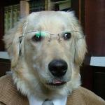 Marcel Ba's avatar