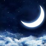 EclipsewingsTheNightWing/Sandbox