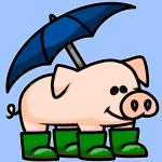 Raining Pigs