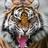 Meeta gautam's avatar