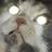 Blastyxsparky's avatar