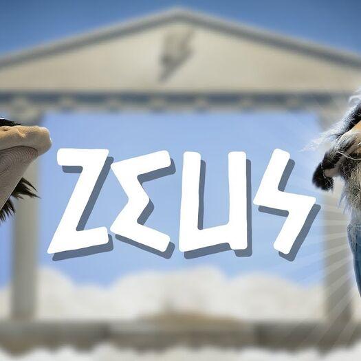 L'histoire racontée par des chaussettes - ZEUS