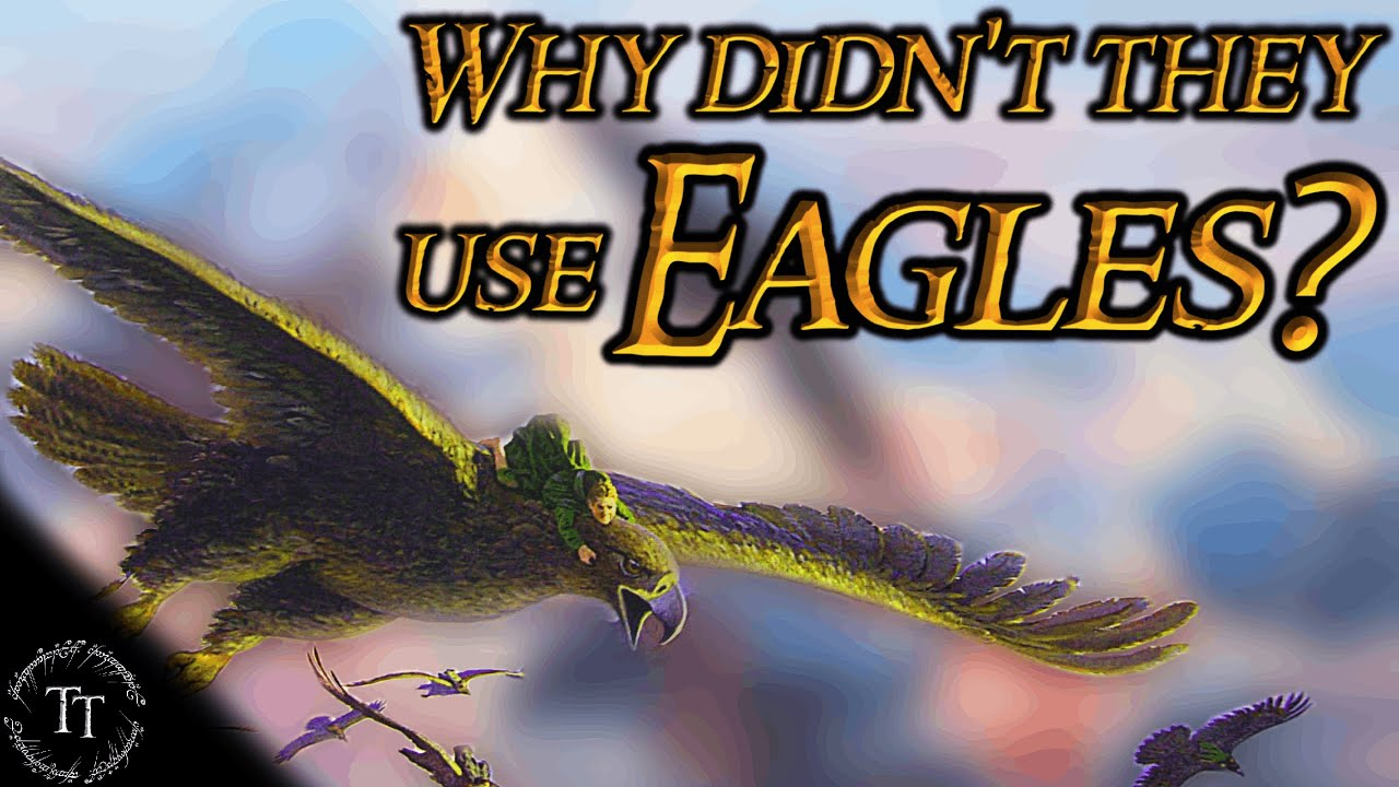 Why didn't the Eagles Fly the Ring to Mount Doom? #Shorts
