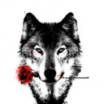 Wolfyboy118