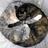 Sabriel4ever's avatar