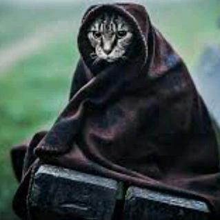 Faret's avatar