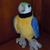 ParrotFan389
