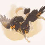 Androbirb's avatar