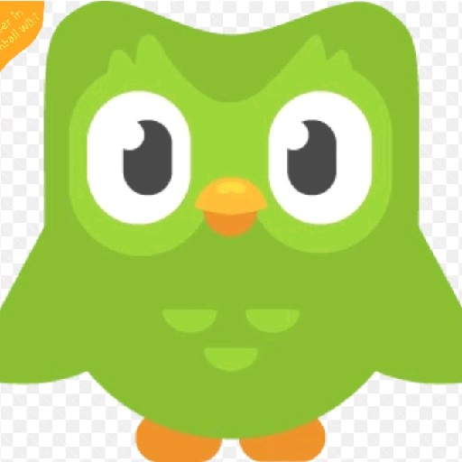 The Duolingo Bird's avatar