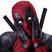 Liberalis Petitor's avatar