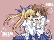Sakura and Nemu fanart