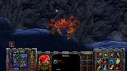 Spider crab companion