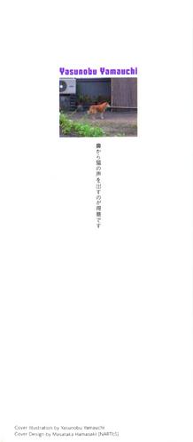 Author's Note