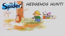 Spider Hedgehog Hunt.jpg