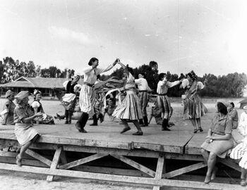 אוסף צילומים של הצלם זולטן קלוגר טווח מספרי התשלילים 19538 - 19554-ZKlugerPhotos-00132im