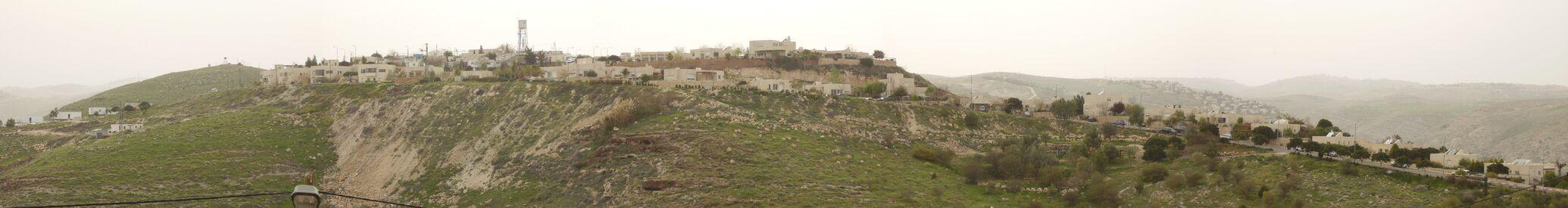 מבט ממזרח על היישוב; ברקע בצד ימין – עלמון (ענתות) צילם:Rickjpelleg