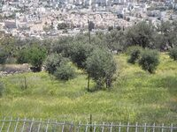 Tomb of Yiahai and Ruth view to Hevron2
