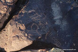 ציורי סלע עבדת