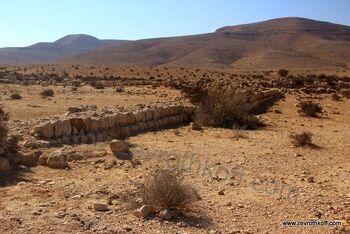 חקלאות עתיקה בנחל ניצנה