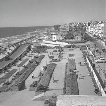 כיכר לונדון בתל-אביב-JNF013330 1943