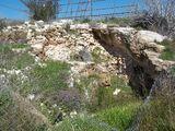 פארק ארכאולוגי קדומים
