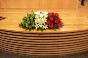 Flowers as italian flage