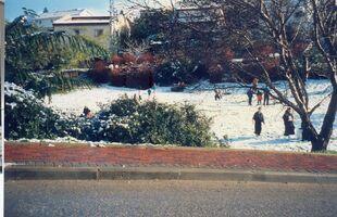 Snow a kdumim 3