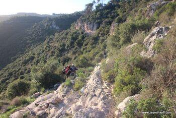 צוקי הר הכרמל