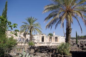 Kafarnaum BW 7