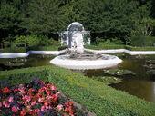 Star Pond-Butchart Gardens